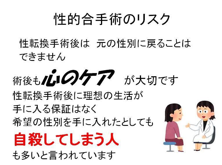 リーフレット 12