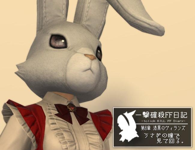 ウサギの瞳で見て回る