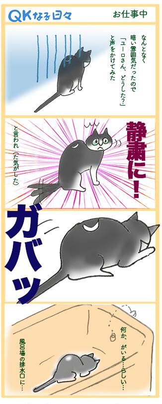 qk manga24
