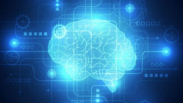 brain-future-tech-implant-ss-1920-800x450