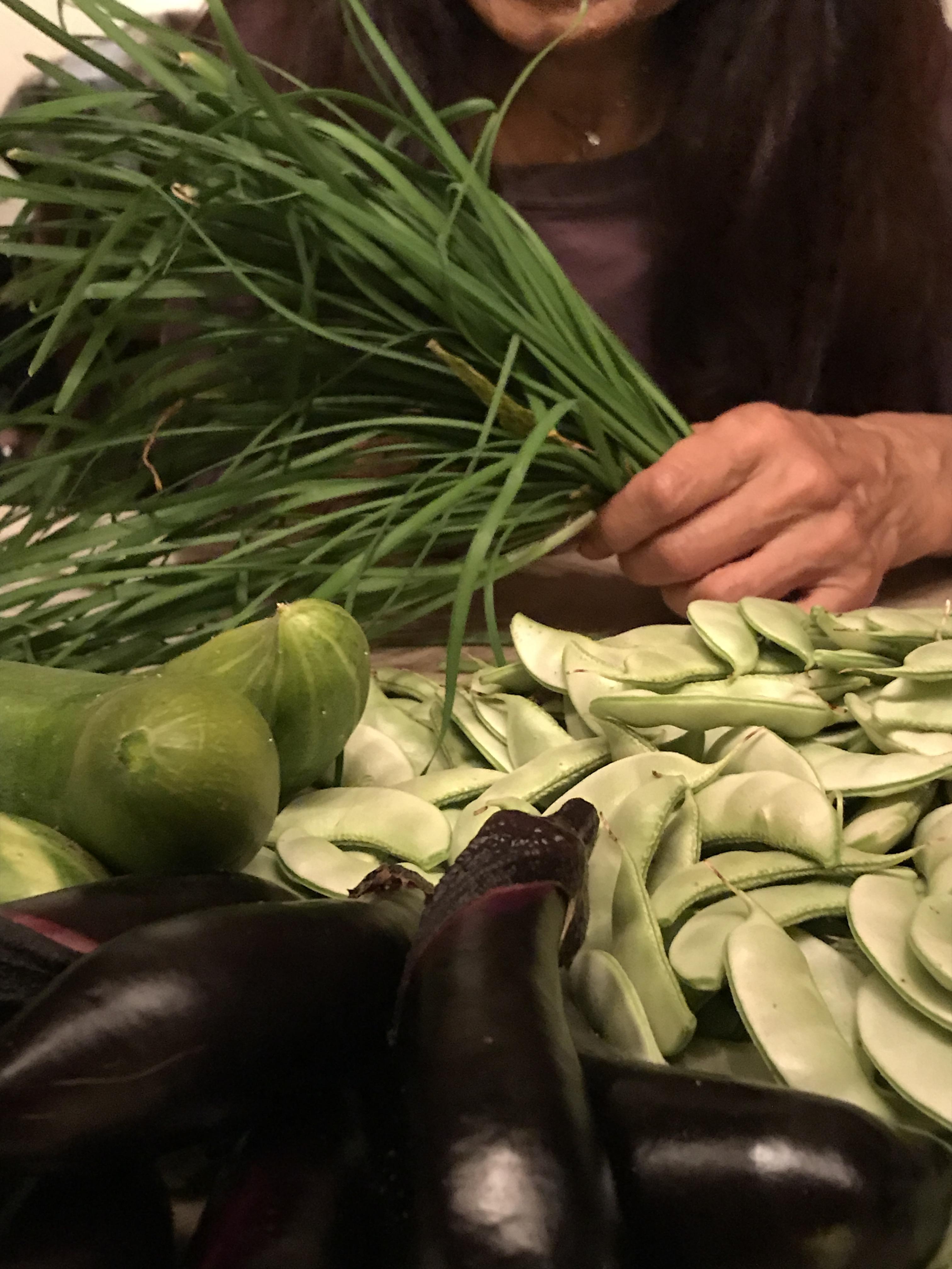 韮、胡瓜、千石豆
