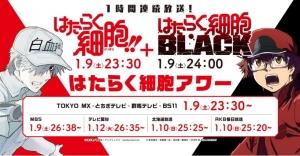 hataraku20210110.jpg