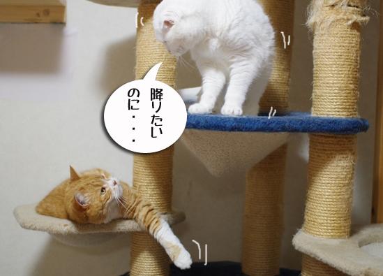 25yちぃいいいうコピー