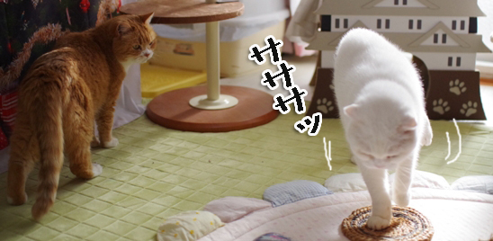 いいいf@あーうぇれれrコピー