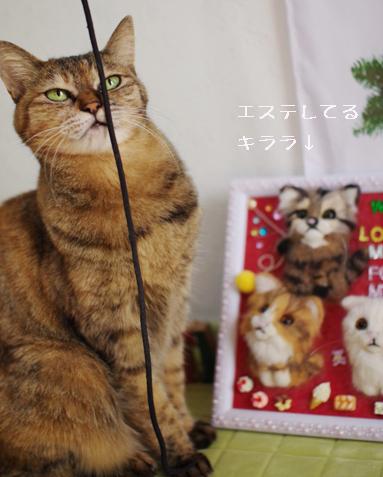 それぞれに嬉しいクリスマスプレゼント
