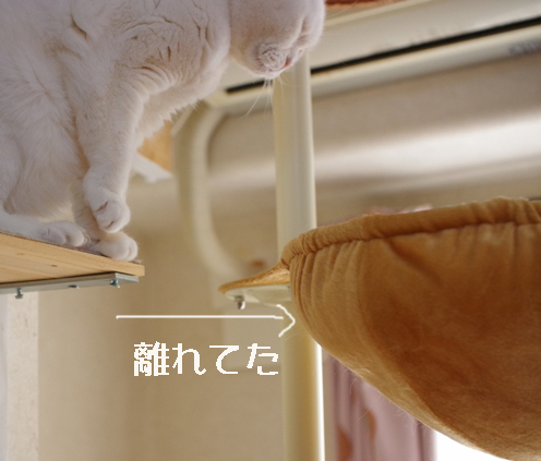 jhjhjjj@っぽpピー