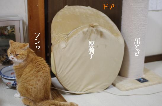 sddffdsfsdfhfdfdfのコピー