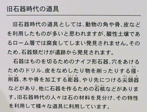 200313kawa08.jpg