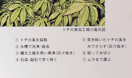 200313kawa14.jpg