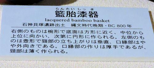 200313kawa16.jpg