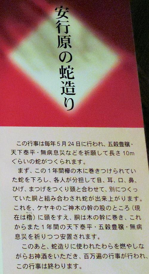 200313kawa25.jpg