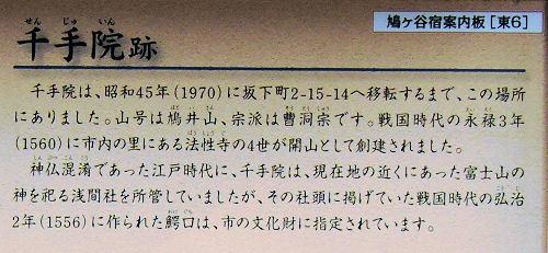 200320hato22.jpg