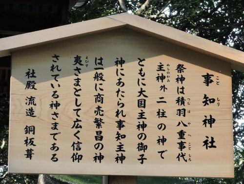 200429koto46.jpg
