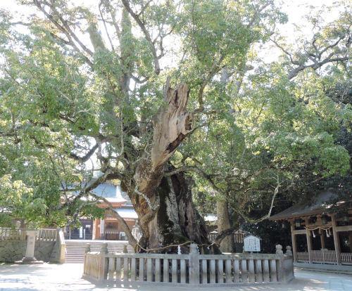 200514iyoichi06.jpg
