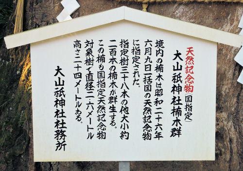 200519yamatsumi22.jpg