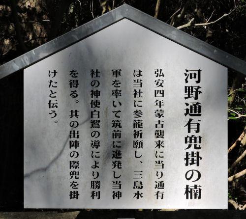 200519yamatsumi26.jpg