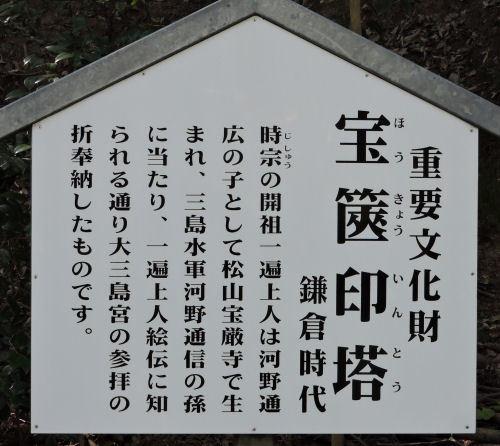 200519yamatsumi28.jpg