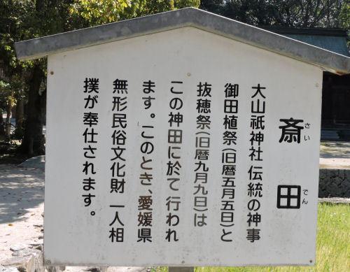 200519yamatsumi32.jpg