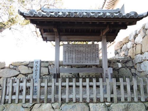 200602imabari36.jpg
