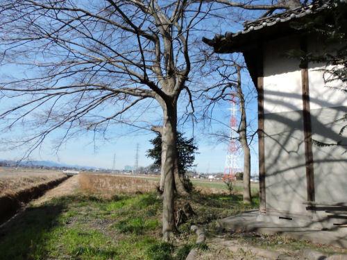 200613tanaka19.jpg