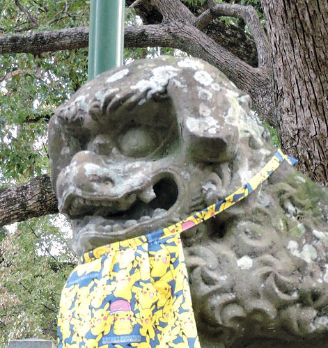200628asahiko05.jpg