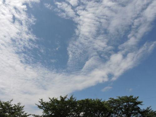 200718tenjin35.jpg