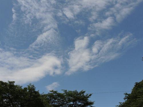 200718tenjin38.jpg
