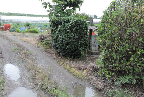 200810sugama02.jpg