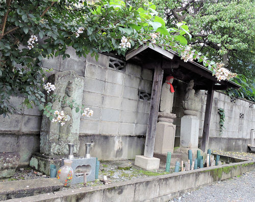 200820kamioi03.jpg