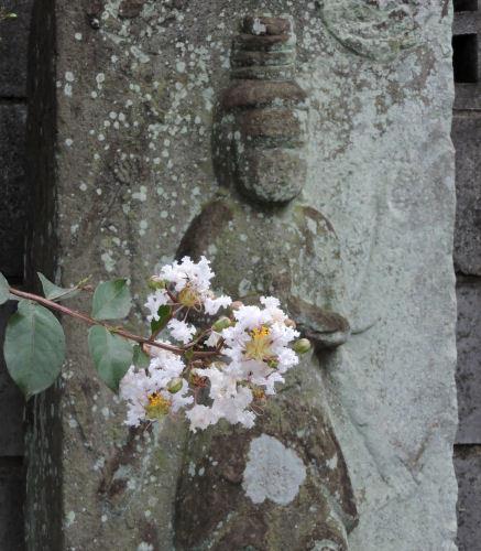 200820kamioi06.jpg