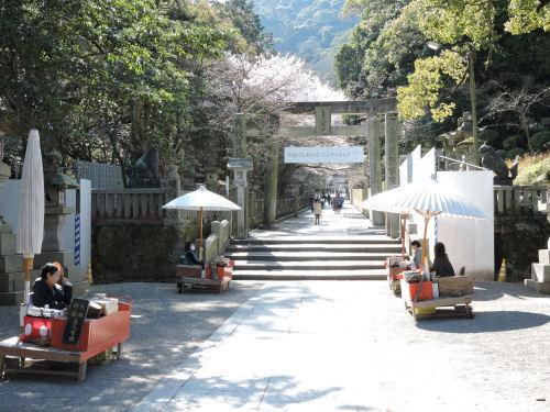 201121konsakura01.jpg
