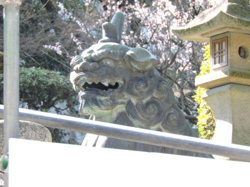 201121konsakura05.jpg