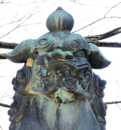 201121konsakura11.jpg