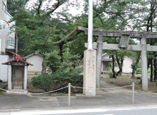 201202kawahika01.jpg