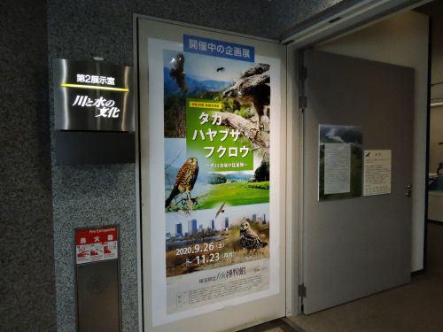 201203kawahaku05.jpg