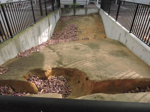 201221kokubun07.jpg
