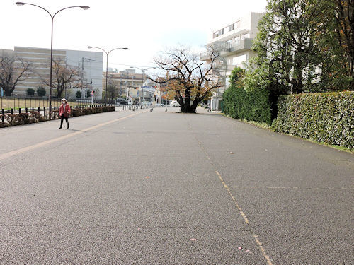 201221kokubun11.jpg