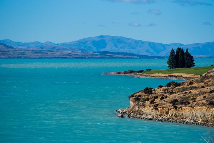 ニュージーランド 旅行 プカキ湖