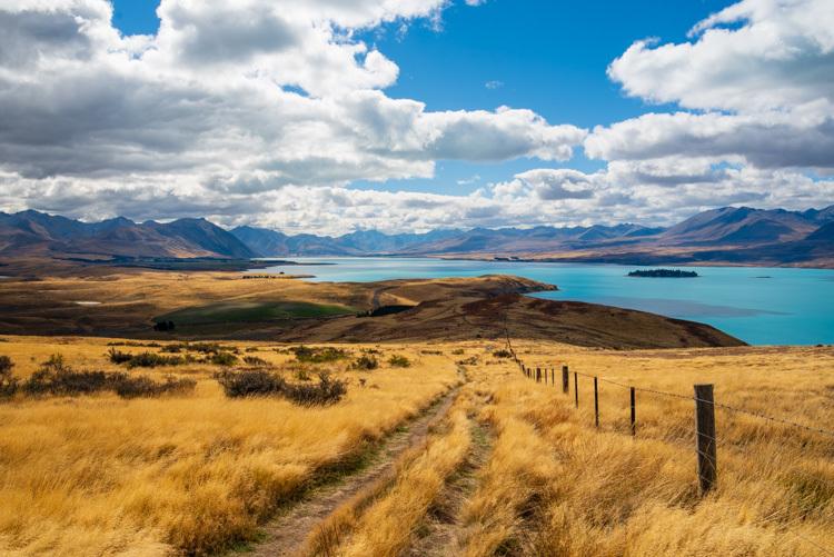 ニュージーランド ハイキング テカポ マウントジョン