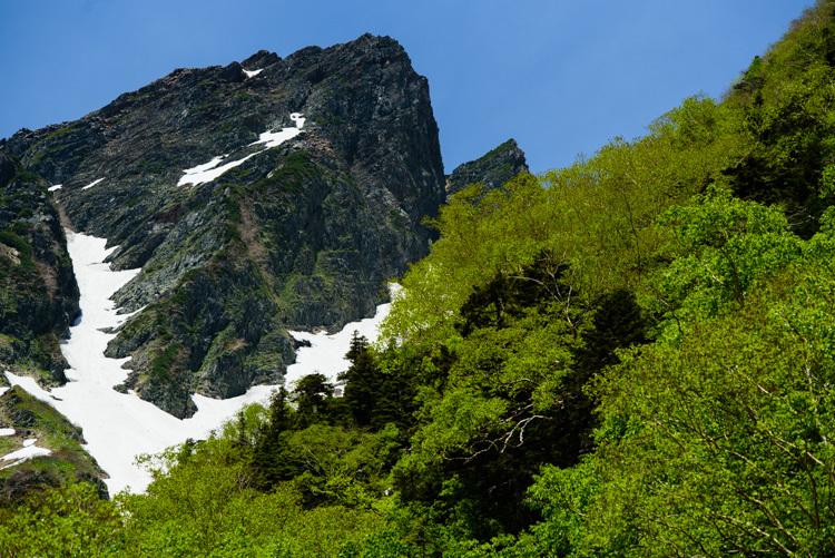 上高地 岳沢小屋 新緑 残雪