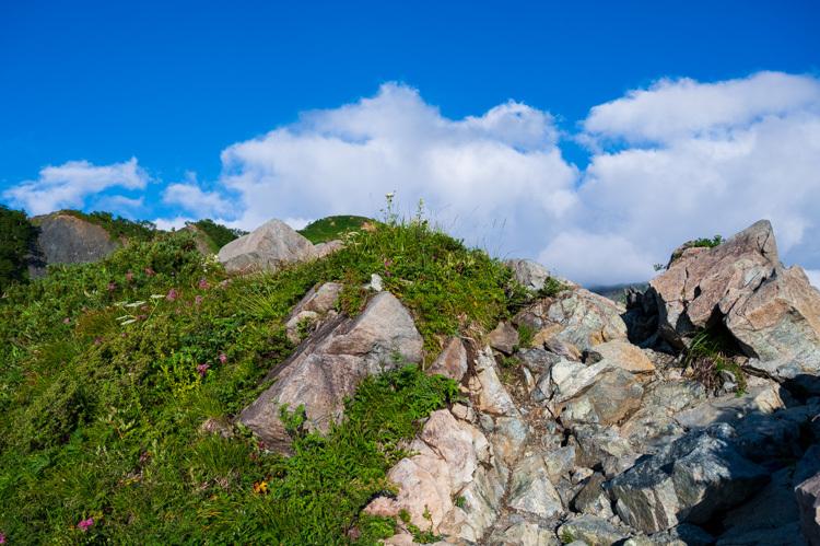 唐松岳 八方池 登山道