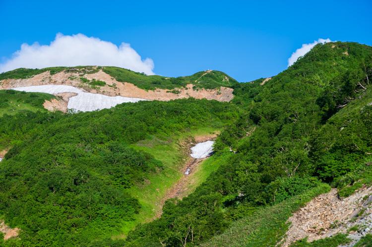 唐松岳 登山 トレッキング 上の樺 扇雪渓