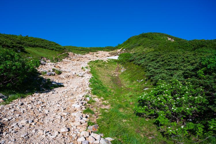 唐松岳 登山 トレッキング 丸山ケルン ナナカマド