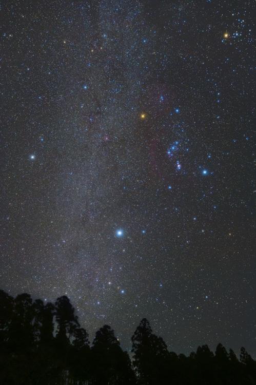 冬の大三角 星景写真 天の川 星空 オリオン座 シリウス