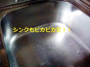 シンク、洗浄後、テラクリーナーヤマト