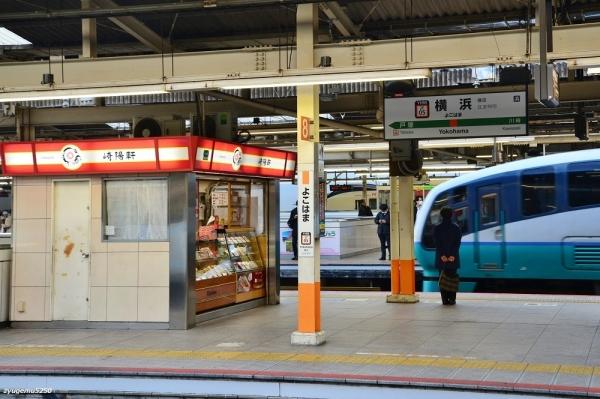 2020年2月17日 JR東日本東海道本線 横浜 251系