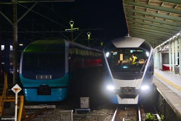 2020年2月18日 伊豆急行線 伊豆急下田 JR東日本251系RE-2編成/E261系RS1編成