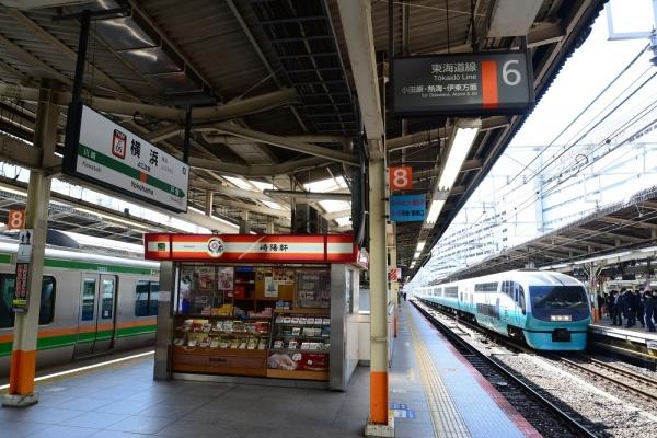 2020年2月18日 JR東日本東海道本線 横浜 251系RE-4編成