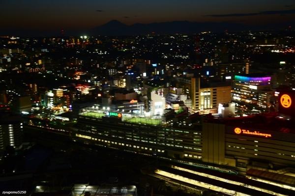 2020年3月13日 JR東日本横須賀線 保土ヶ谷~横浜 251系