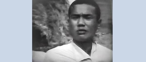 不良少年 (1961)